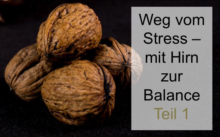 Mit Hirn zur Balance 1