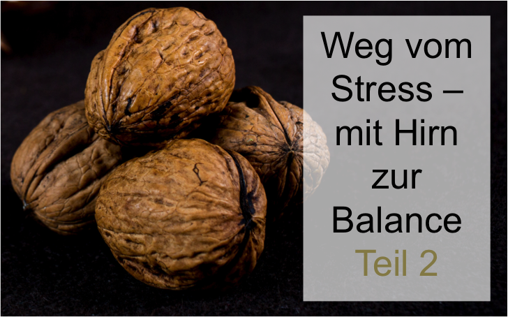 Mit Hirn zur Balance 2